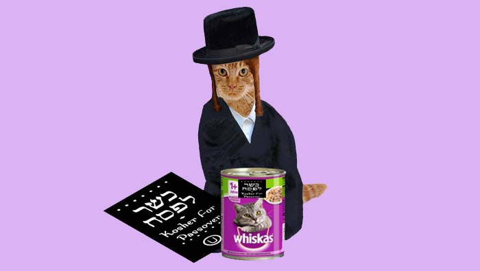 Kosher For Passover Cat Food