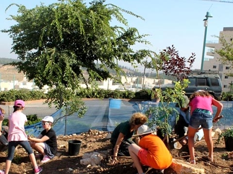 Volunteers planting fruit and veg in Modiin (Credit: City of Modiin)